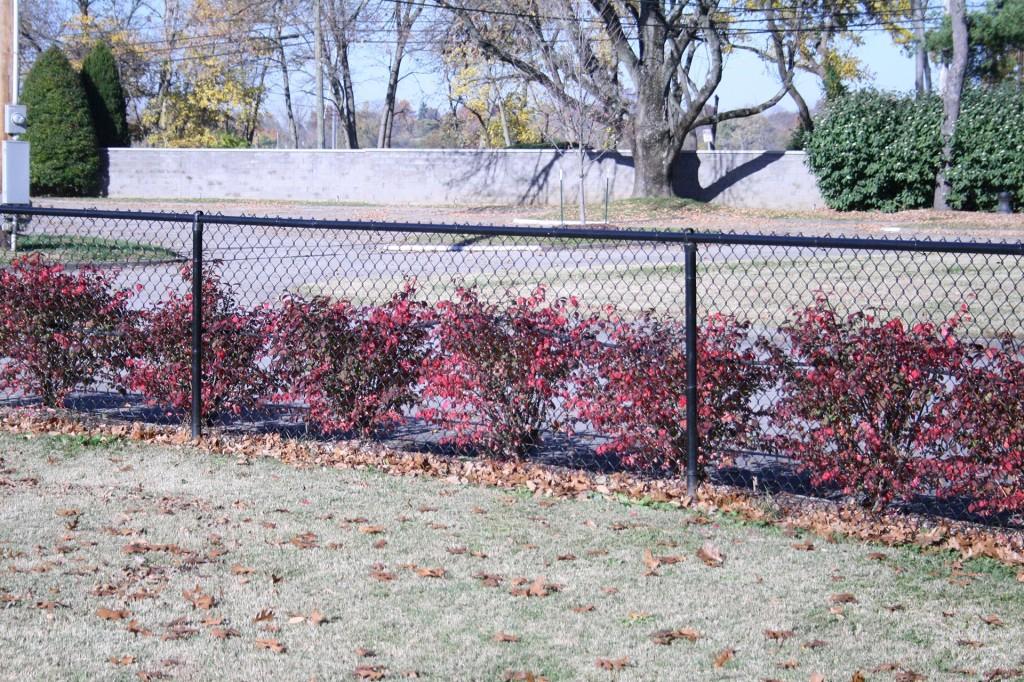 Chain Link Hartlage Fence Company